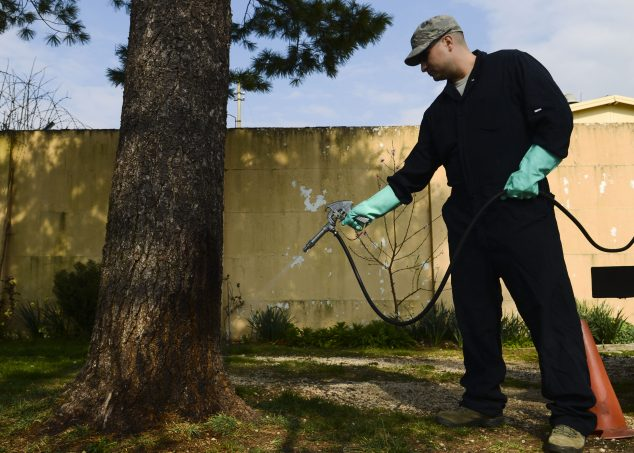 spraying pests